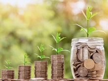 «Налоговый вычет уменьшает бюджет, но привлекает инвесторов». Чем СОСПП займется в 2020 г.