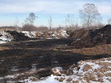 Министерство экологии выявило источник неприятного запаха в Челябинской области