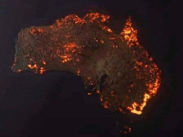 Миллиард погибших животных: в Австралии нарастает катастрофа с лесными пожарами