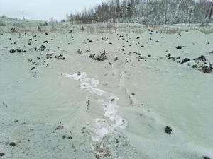 В Челябинской области выпал зеленый снег