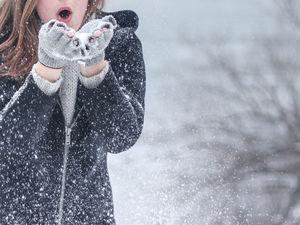 Красноярский край в ближайшую неделю окажется в зоне аномального тепла