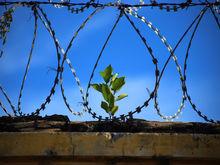 Уральские зэки поработают на китайцев. Азиаты инвестируют в производство на базе тюрьмы