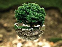 Краевое министерство экологии и Сбербанк будут совместно работать над улучшением экологии