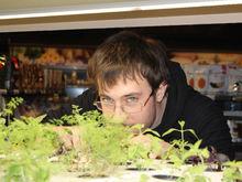 Будущее наступило: продукты будут выращивать прямо в магазине. Первый опыт в Екатеринбурге
