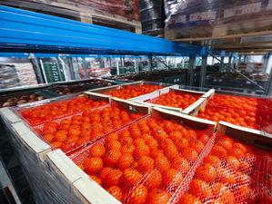 «Командор» открыл в Красноярске высокотехнологичный складской комплекс