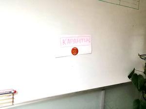 Все-таки эпидемия. Из-за вируса в Свердловской области закрыли 13 детсадов и четыре школы