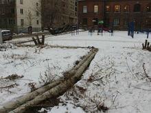 В центре Челябинска вместо двух пустырей создадут скверы