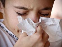 Заболевших с каждым днем все больше. На карантин закроют все школы города