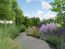 В Москве построят сад по проекту челябинских дизайнеров