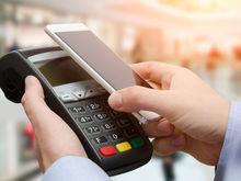 Бесконтактные платежи повышают средний чек красноярских интернет-магазинов