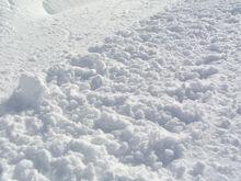 Из-за ЧС снова запустили снегоплавильную станцию в Новосибирске