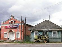 Основательница Wildberries обогнала Батурину: в России сменилась самая богатая женщина