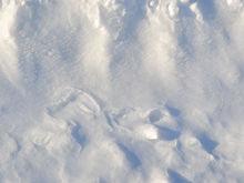 Локоть оправдал запуск снегоплавильной станции предстоящим паводком
