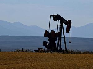 «Я в легком шоке». Цена нефти рухнула: что ждет рубль после развала сделки России и ОПЕК?