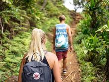 Новые экотропы для привлечения туристов создадут в регионе