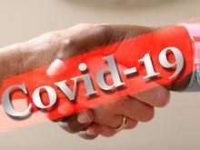 Как новосибирские компании защищают сотрудников от коронавируса?