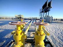 12 крупных компаний Красноярского края ищут кадры для инвестпроектов