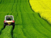 Технику на миллиард государственных рублей купили новосибирские аграрии