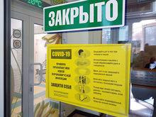 Минтруд разъяснил, как платить работникам в «путинские каникулы»