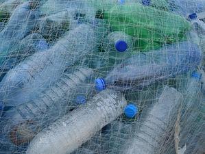 Правительство региона утвердило порядок лишения статуса мусорного регоператора