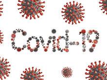 В России впервые зафиксировано более 2000 новых случаев коронавируса