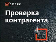 «Интерфакс» открыл свободный доступ к системе «СПАРК» на период самоизоляции