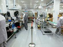 Уникальную для России форму парацетамола начали производить в Новосибирске