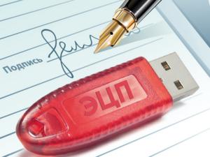 Красноярским поставщикам готовы оформить электронную подпись бесплатно