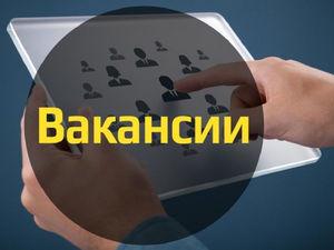 Топ-3 востребованных профессий в Красноярске во время кризиса