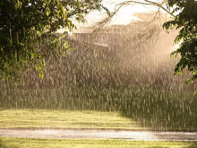 Красноярск ожидает небольшое похолодание и дожди в конце апреля