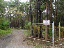В Челябинске и Магнитогорске закроют кладбища на Родительский день