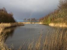 Неустойчивая погода в Нижегородской области сохранится до конца апреля