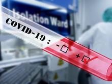 Снова антирекорд: в России нашли более 11,6 тыс. новых случаев коронавируса