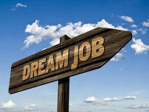 Красноярские бухгалтеры активно ищут работу