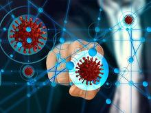 Число больных коронавирусом в России превысило 242 тыс. человек