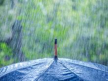 Красноярск ожидает резкое похолодание и дожди