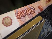 Минэкономразвития: почти 1,5 тыс. новосибирских предпринимателей получили помощь