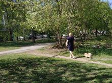 «В Свердловской области живут сознательные люди». Региональные власти ответили санврачу