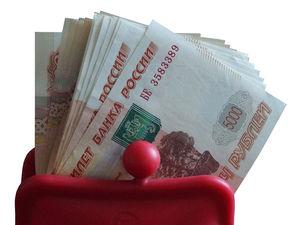 Новосибирские депутаты попросили Мишустина помочь городскому бюджету