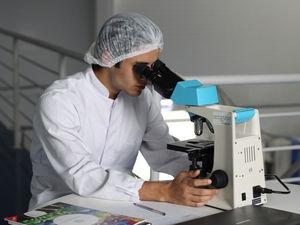 В России поставлен рекорд по смертям от коронавируса. Но число зараженных меньше 9000