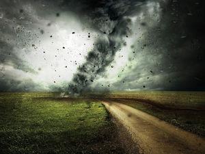 50 тысяч новосибирцев остались без электричества во время непогоды