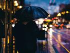 Холодная и дождливая погода установится в Новосибирске на неделю