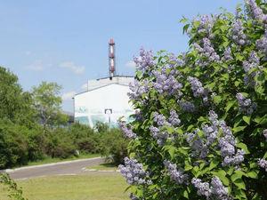 РУСАЛ раздаст гранты авторам экологических решений для заводов