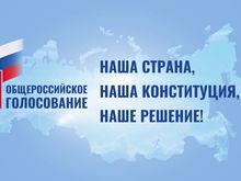 Без очередей и видеонаблюдения. Как будет проходить голосование за путинские поправки