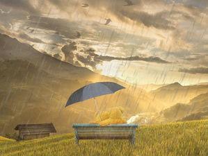 Еще одна дождливая неделя ждет жителей Новосибирска