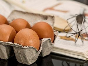 «Енисейский стандарт» проверил безопасность яиц