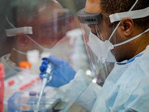 В России зафиксировано еще 9 тыс. случаев коронавируса. Смертность пошла на спад