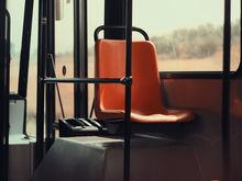 Сокольское осталось без половины пригородных автобусов из-за коронавируса