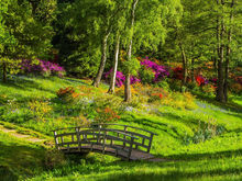 За 40 миллионов обустроят самый большой парк Бердска