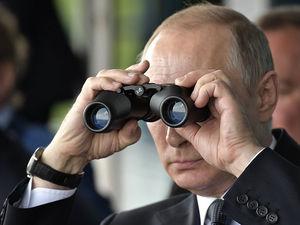 Общественная палата Красноярского края ищет наблюдателей на голосование о поправках